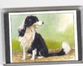 BORDER COLLIE LARGE FRIDGE MAGNET 3
